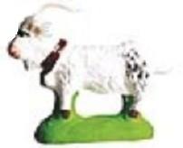 Chevre (Goat) brown, white or gray
