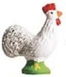 Coq (Rooster)