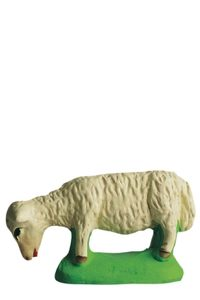 Mouton_broutant_2